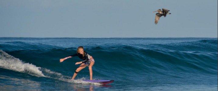 Pargos Adventures - Surf