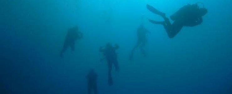 Punta Uva Divers - Plongée