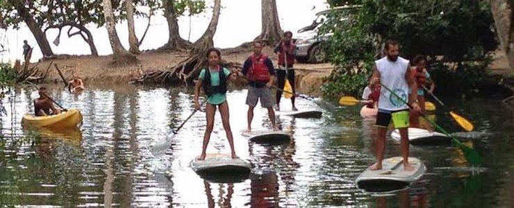Punta Uva Divers - Stand-up Paddle en rivière