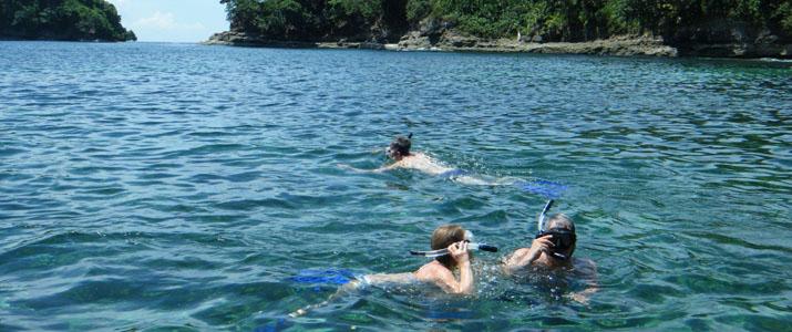 CR snorkeling tours 2 Alt mer observation faune marine