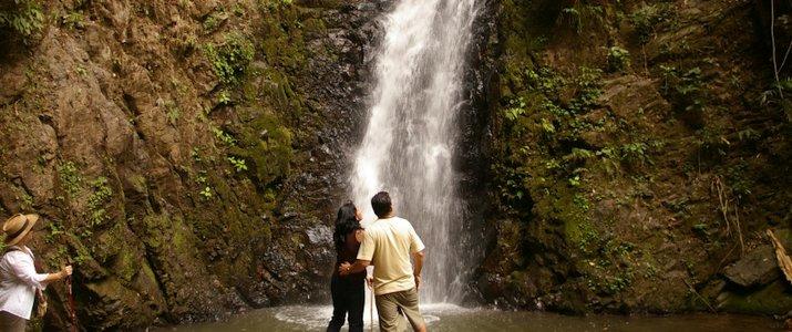Santuario Ecologico Ecological Sanctuary Monteverde Santa Elena Rain Forest Forêt de Nuages Cascade