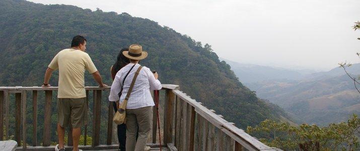 Santuario Ecologico Ecological Sanctuary Monteverde Santa Elena Rain Forest Forêt de Nuages Vue Panoramique