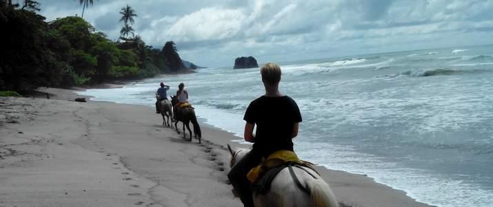 tokpela cheval chevaux randonnees plage ile ilot sable blanc