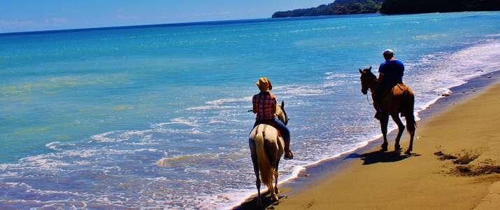 Cheval, nature, mer, plage, balade, corcovado, osa, puerto Jimenez, activité, costa rica