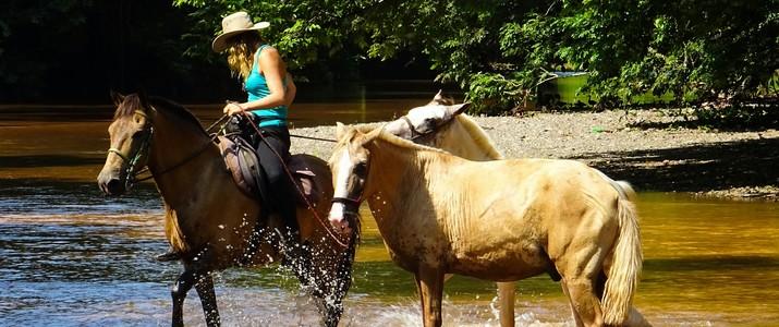 Horse Jungle balade cheval rivière