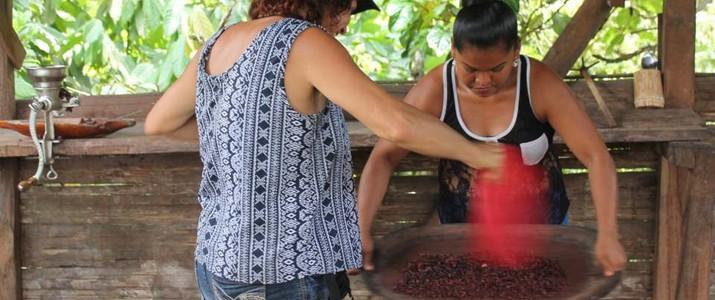 Cariari Tours Cahuita tour de chocolat