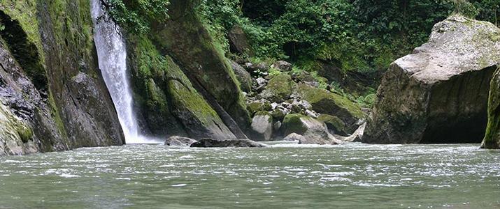 Selva Verde Cascade Nature