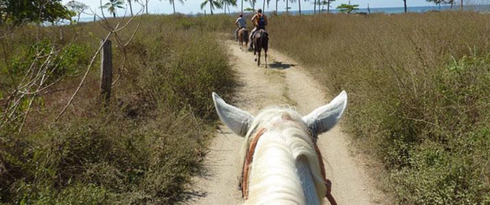 Star Mountain Jungle Lodge cheval balade