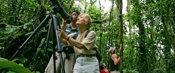 Rainforest Adventures Atlantic observation
