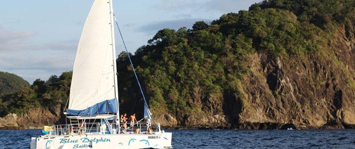 Blue Doplhin Sailing voilier