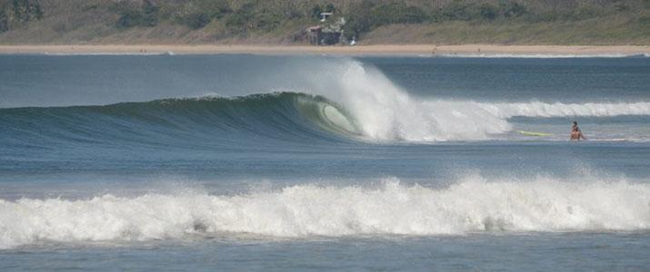 Kelly's Surf shop vagues