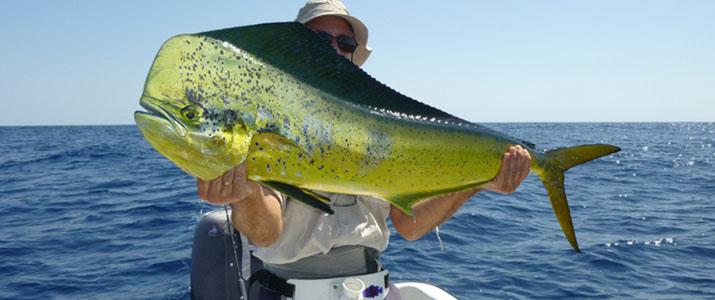 Samara Fishing trip poisson