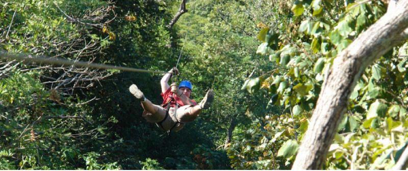 Monkey Jungle Canopy tyrolienne