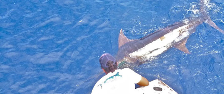 Tamarindo Sport Fishing pêche