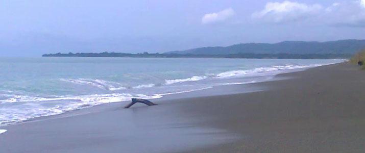 Corcovado Dreams  3 Alt plage