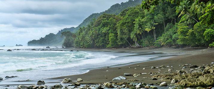 Corcovado Dreams  4 Alt plage