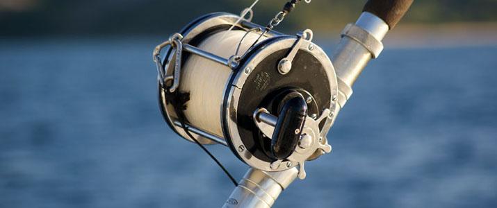 Alt 4 pêche poisson mer espadon