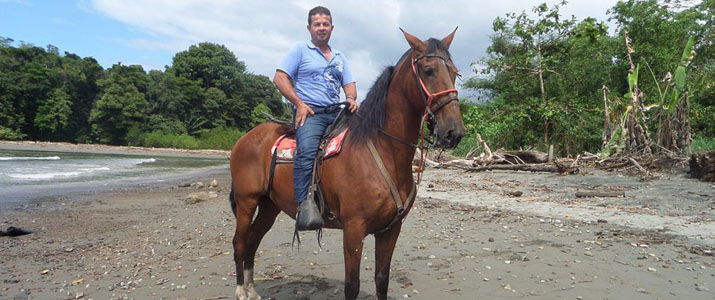 Alt 1 cheval