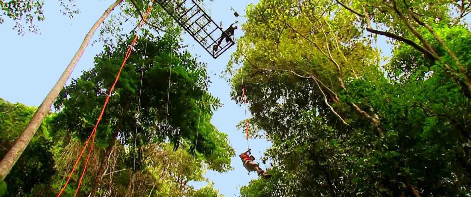 rainforestadventure2alt