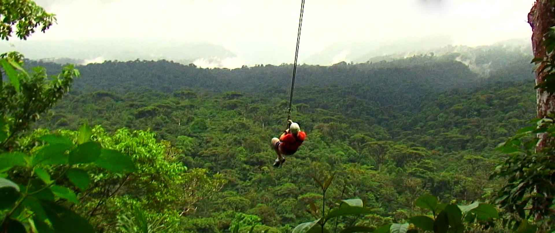 rainforestadventure3alt