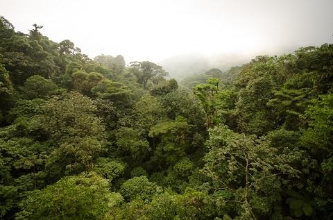 Régions du pays, régions du costa rica à ne pas rater, plus beaux sites touristiques,