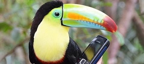 téléphone, forfait, carte prépayée, carte assistance, 3G, abonnement téléphonique, prix/minute