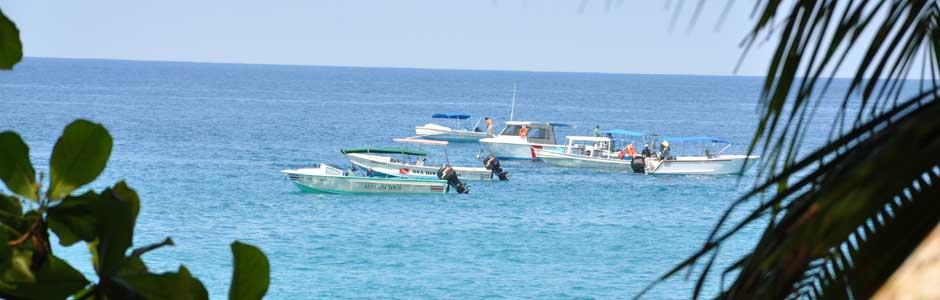 Pêche Sportive Plongée Snorkeling