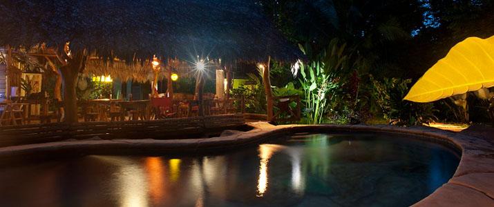 Blue conga Caraïbes Sud Puerto Viejo de Talamanca grande piscine avec terrasse et végétation