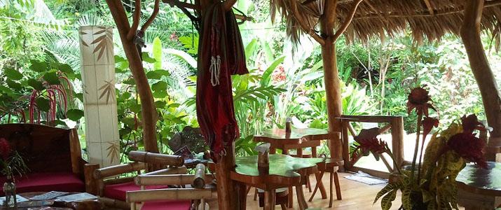 Coin détente au blue conga Caraïbes Sud Puerto Viejo de Talamanca chaises tables banquette végétation terrasse en bois