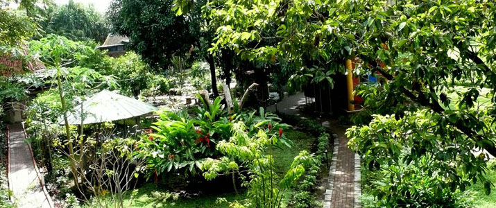 Flying Crocodile jardin