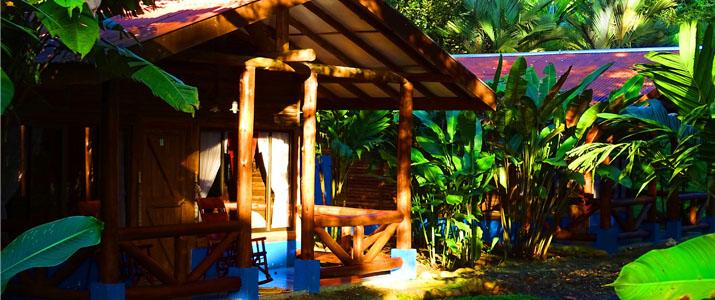Pedacito de Cielo Boca Tapada Cabinas en Bois sur piloti Jungle Terrasse Jardin Luxuriant