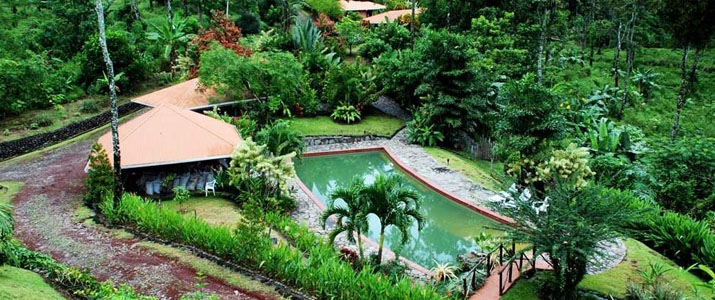 Finca Luna Nueva Chachagua Piscine Hotel Cabinas Verdure Luxuriante