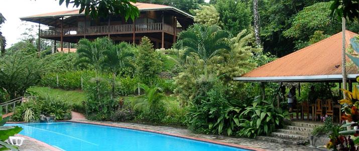 Finca Luna Nueva Chachagua Piscine Hotel Cabinas Verdure Luxuriante Rancho