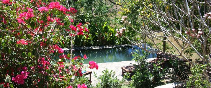 Aroma de Campo Hotel Costa Rica Nature Piscine