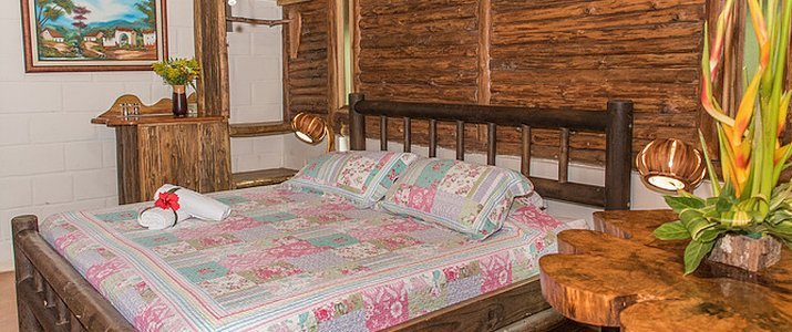 Arenal Oasis Ecolodge La Fortuna Volcan Chambre Double