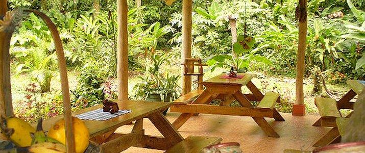 Arenal Oasis Ecolodge La Fortuna Volcan Jungle Restaurant