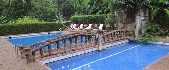 Ara Ambigua Sarapiqui La Virgen Braulio Carrillo Hotel Piscine