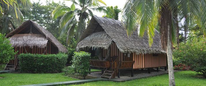 Coco Logo Lodge Caraïbes Sud Puerto viejo de Talamanca bungalow en bois dans immense jardin