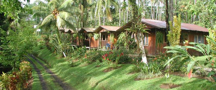 Josipek Chachagua Cabinas en Bois Pleine Nature Verdure Luxuriante Jungle