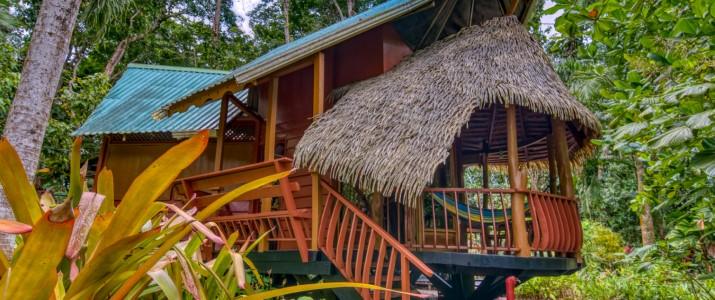 Tree house lodge Caraïbes Sud Puerto Viejo de Talamanca terrasse en bois dans les arbres pleine forêt hamac