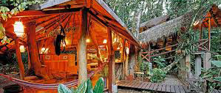 Tree house lodge Caraïbes Sud Puerto Viejo de Talamanca chambre spacieuse et original bois