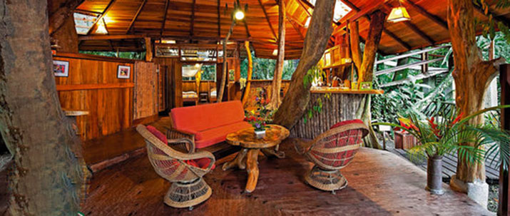 Tree house lodge Caraïbes Sud Puerto Viejo de Talamanca salon bar