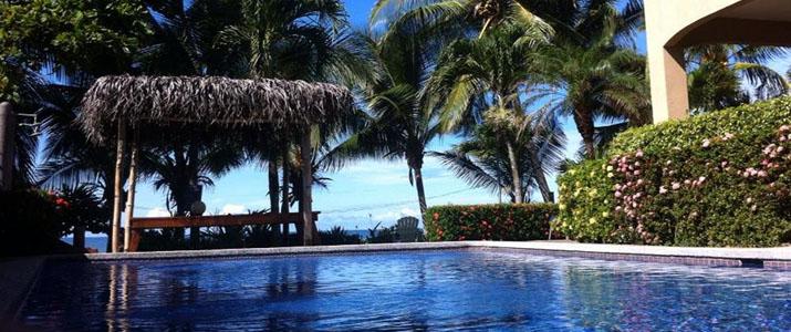 Backyard Hotel Piscine Palmier Détente Jaco Costa Rica