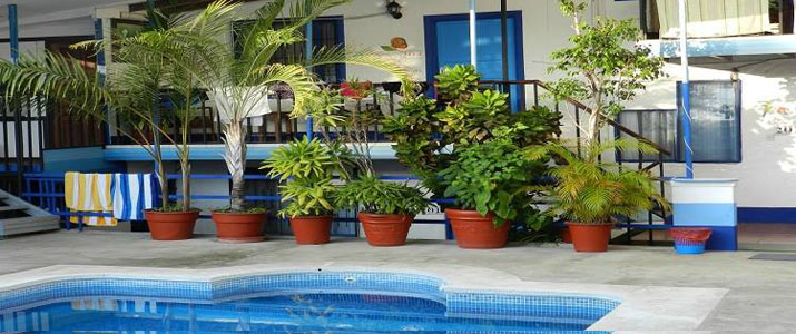 Flor Blanca Pacifique Centre Costa Rica Hotel Piscine