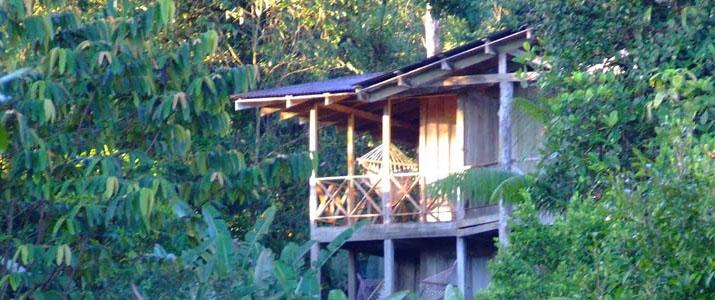 Rara Avis Las Horquetas Braulio Carrillo Puerto Viejo de Sarapiqui Hotel Jungle Terrasse