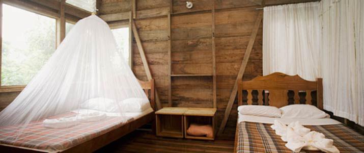 Rara Avis Las Horquetas Braulio Carrillo Puerto Viejo de Sarapiqui Hotel Jungle Chambre
