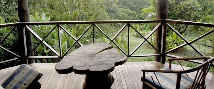 Rara Avis Las Horquetas Braulio Carrillo Puerto Viejo de Sarapiqui Hotel Jungle Vue Terrasse