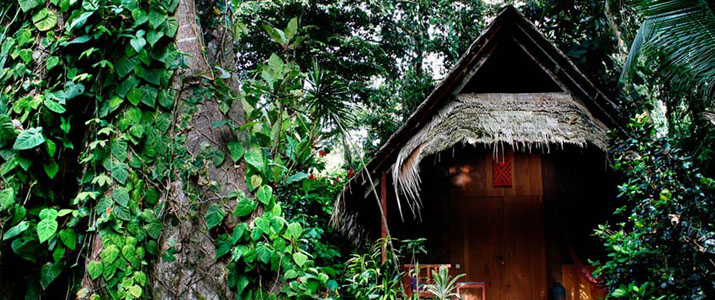 Shawandha lodge Caraïbes Sud Puerto Viejo de Talamanca hutte toit en palme dans la jungle