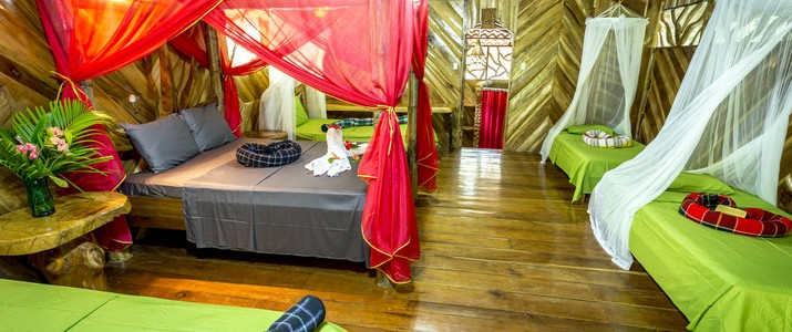 La costa de papito Caraïbes Sud Puerto Viejo de Talamanca chambre en bois avec lit double moustiquaire