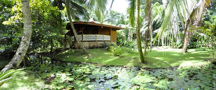 La casa de papito Caraïbes Sud Puerto Viejo de Talamanca restaurant bois